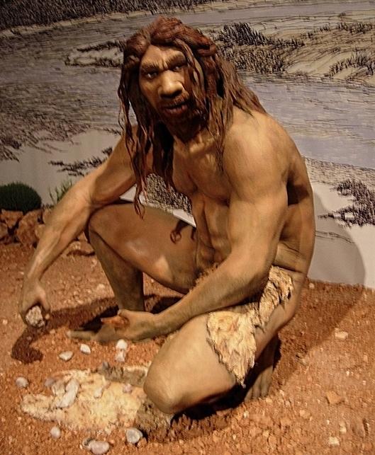 Homo_heidelbergensis_(10233446)